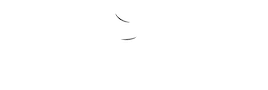 roma party service